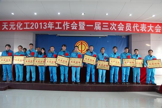 天元化工2013年工作会暨一届三次会员代表大会顺利召开